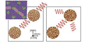 Percolation de phonons dans le réseau d'inclusions